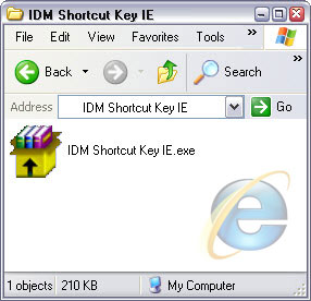 IDM Shortcut Key For IE